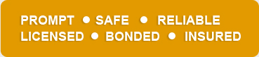 Prompt. Safe. Reliable. Licensed. Bonded. Insured.