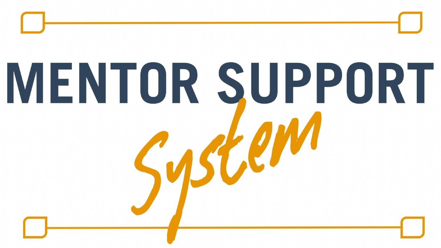 Mentor Support System