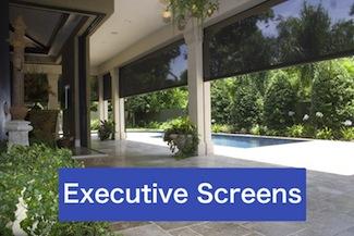 Phantom Executive Screens